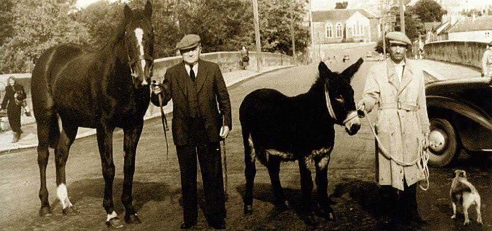 Cottage Rake And Donkey Fermoy Edit