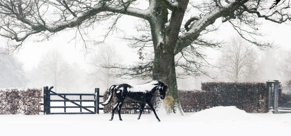 Yeats Statue Snow