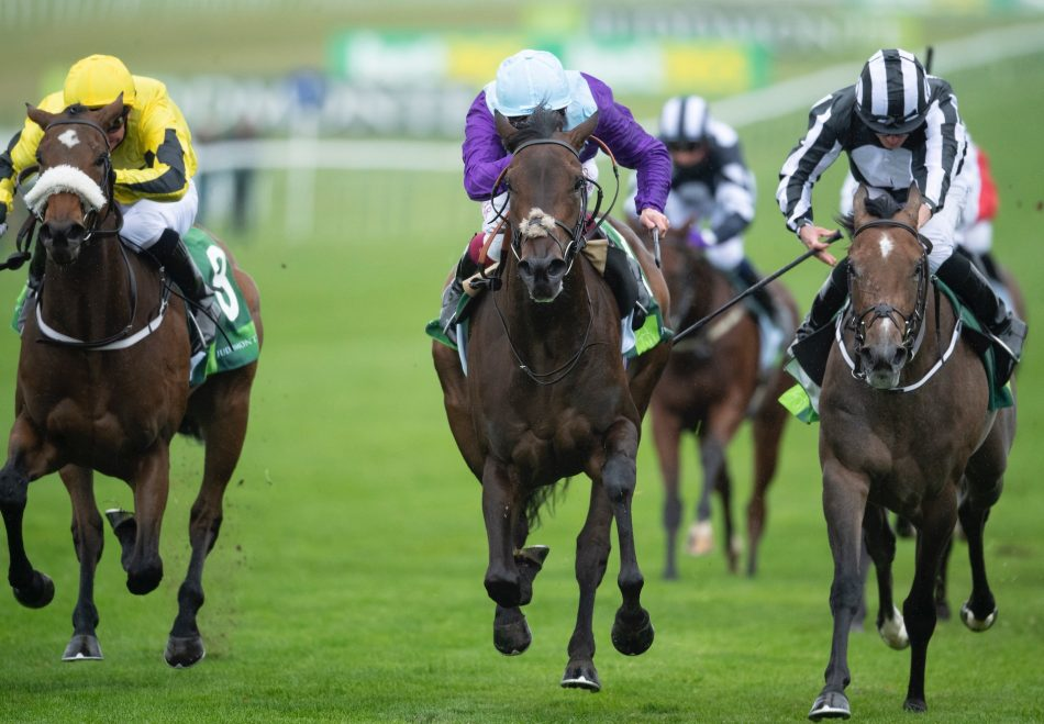 Alberts Back (Champs Elysees) winning over hurdles at Wetherby
