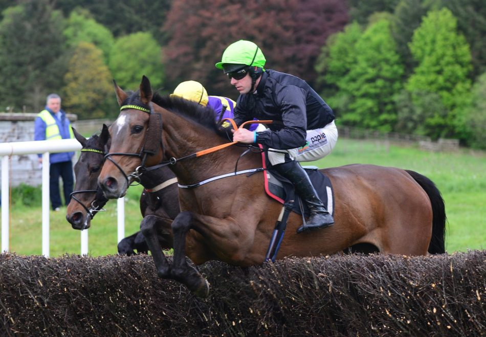 Servalan (No Nay Never) winning the Listed Fillies Sprint at Naas