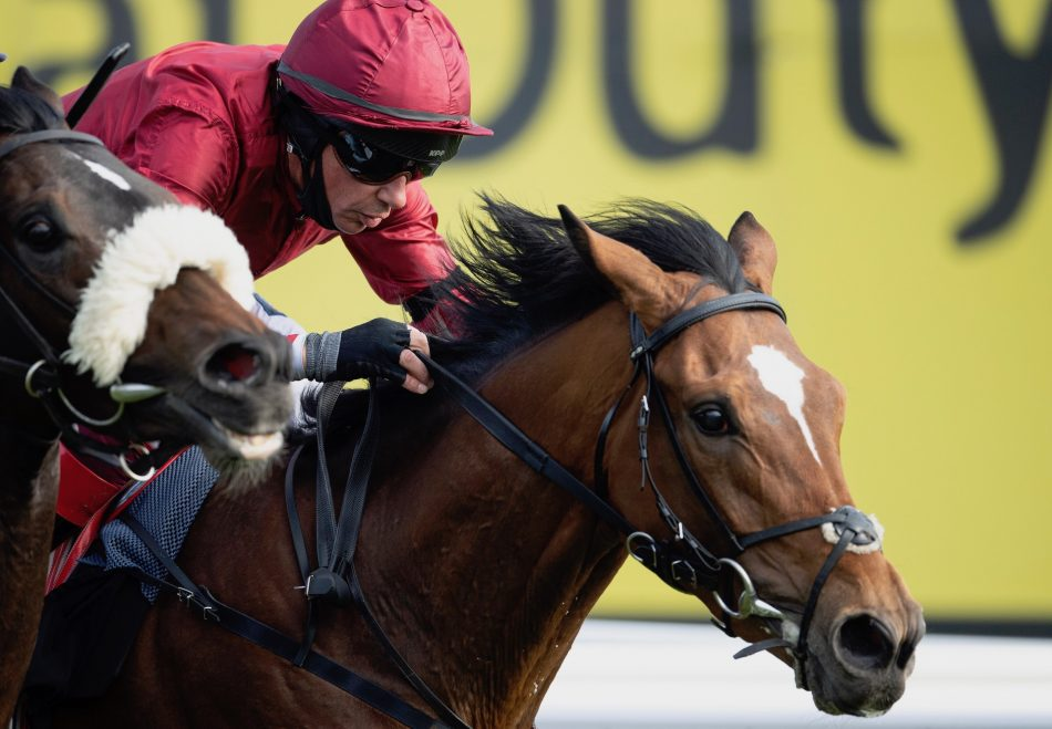 Flag Of Honour (Galileo) winning the G1 St Leger at the Curragh