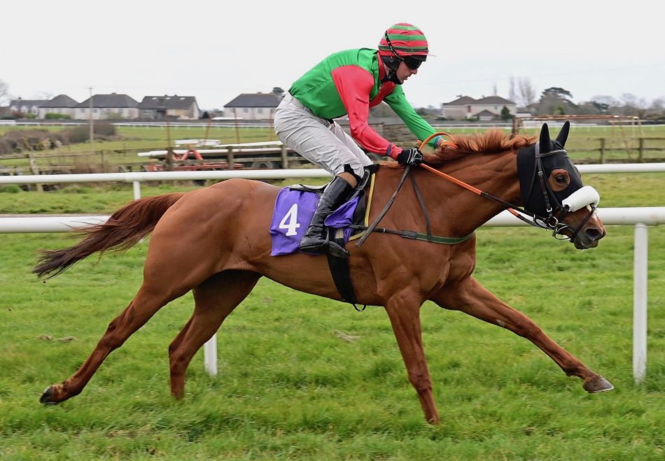 Hazel (No Nay Never) Wins Her Maiden At Dundalk