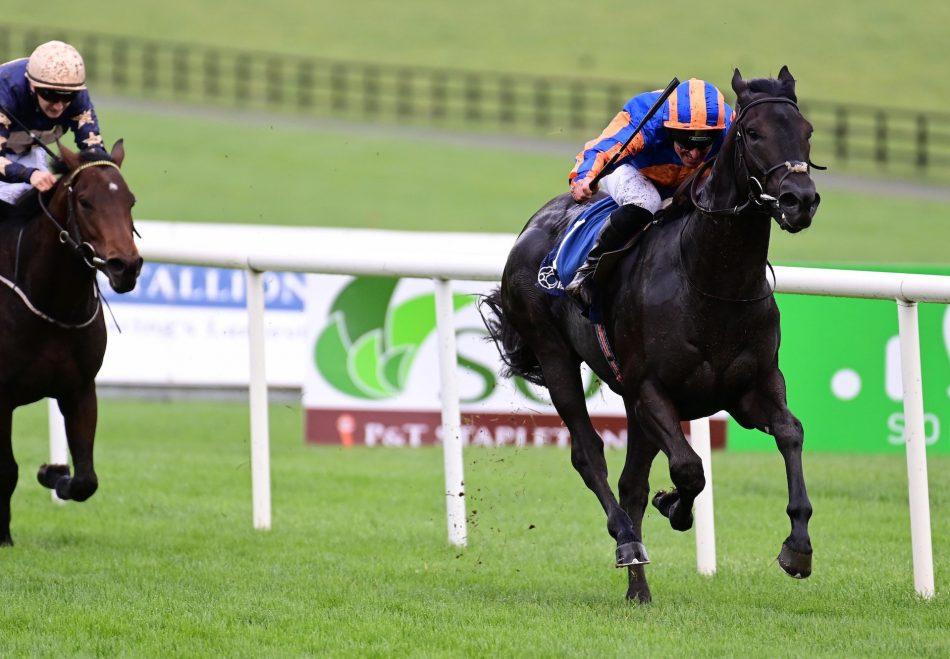 Dolce Strega (Zoffany) winning at Tipperary