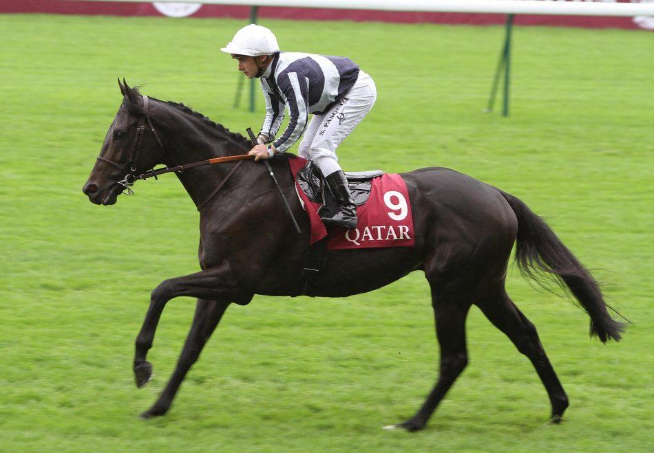 Not Available (Milan) Wins The Maiden Hurdle At Kilbeggan