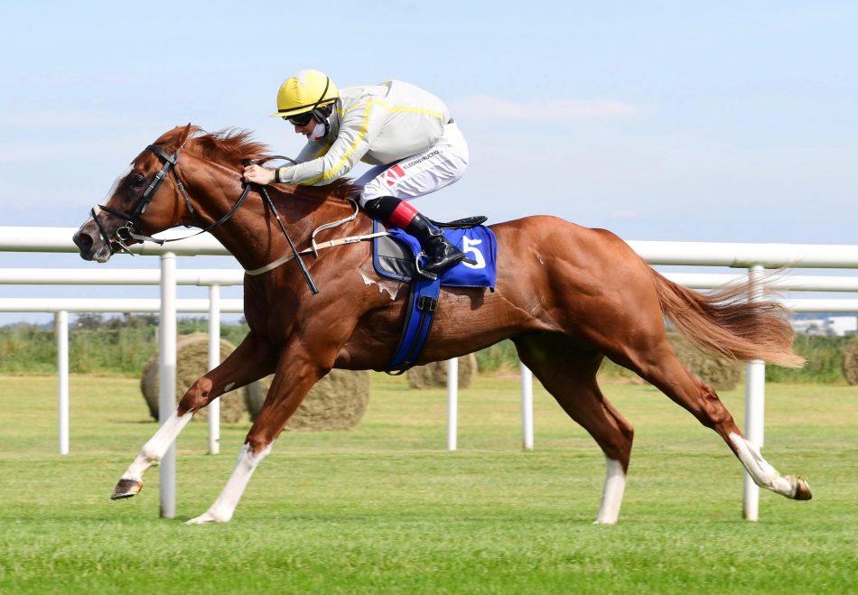 Getariver (Getaway) winning a bumper at Ludlow