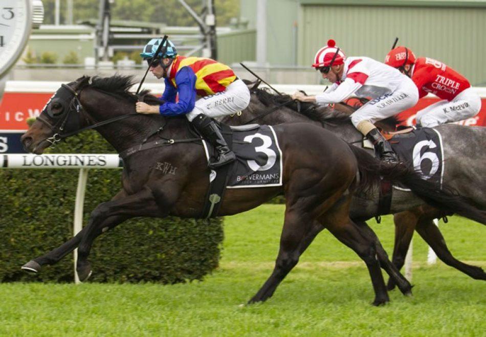 Age Of Fire (Fastnet Rock) winning the G1 New Zealand 2,000 Guineas
