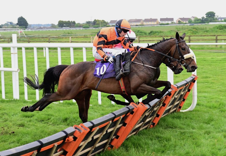Red Hanrahan (Yeats) winning a 4yo gelding maiden point-to-point at Durrow