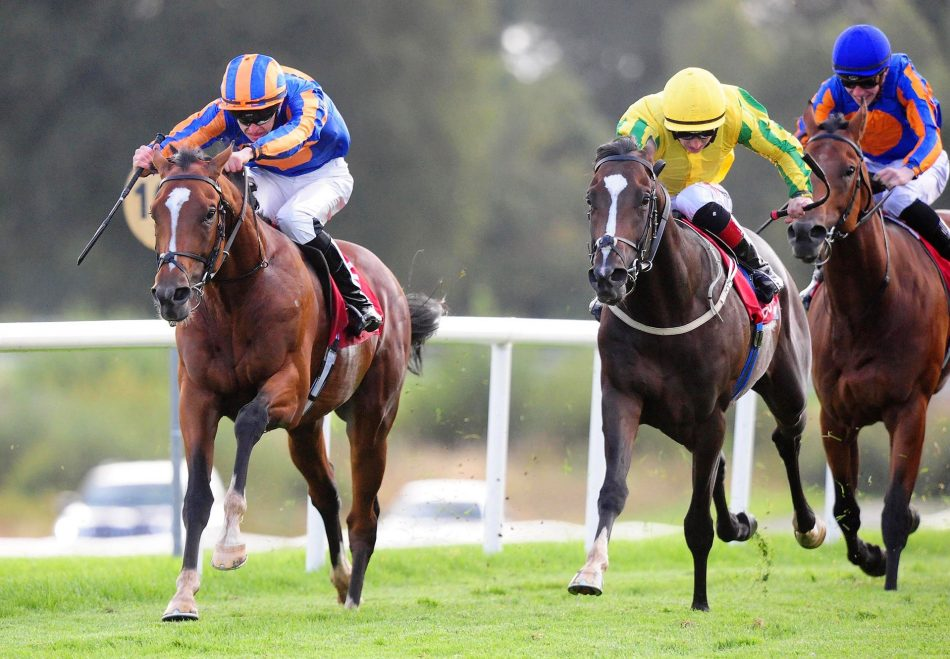 Canary Row (Holy Roman Emperor) winning the Listed Vincent Ruby Stakes at Killarney