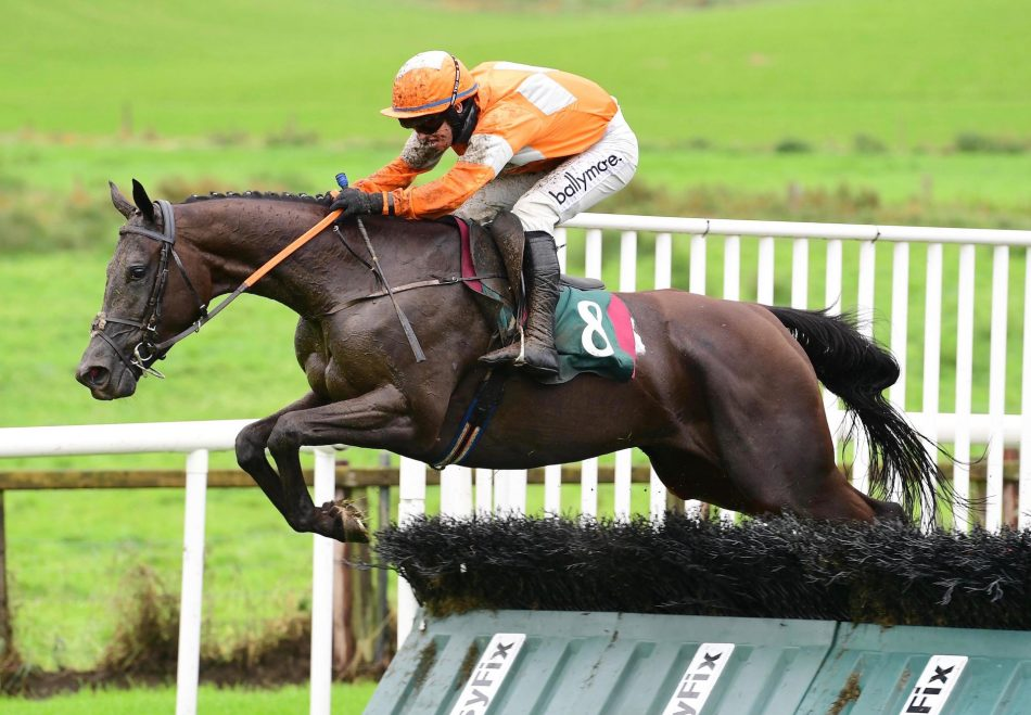 Birch Grove Becomes The 300Th Stakes Winner By Galileo