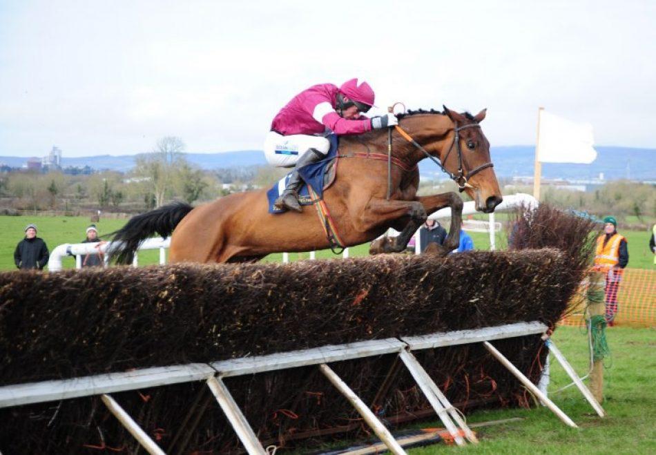 Vitamin (Camelot) winning at Newmarket