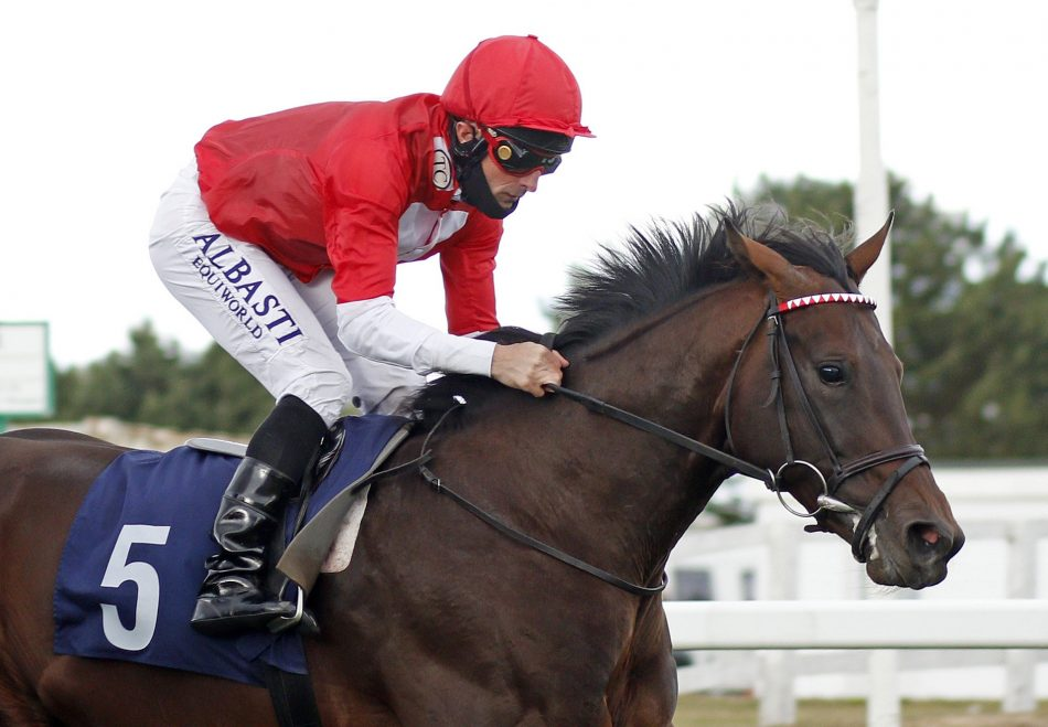 Sumos Novios (Flemensfirth) winning the G3 Imperial Call Chase at Cork