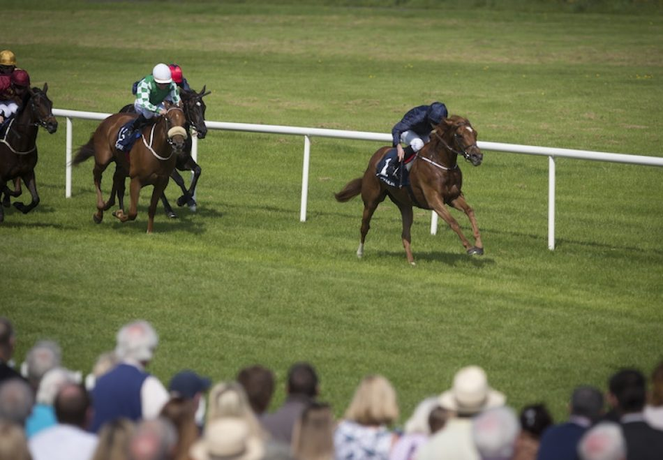 Idaho (Galileo) winning the G3 Ormonde Stakes at Chester
