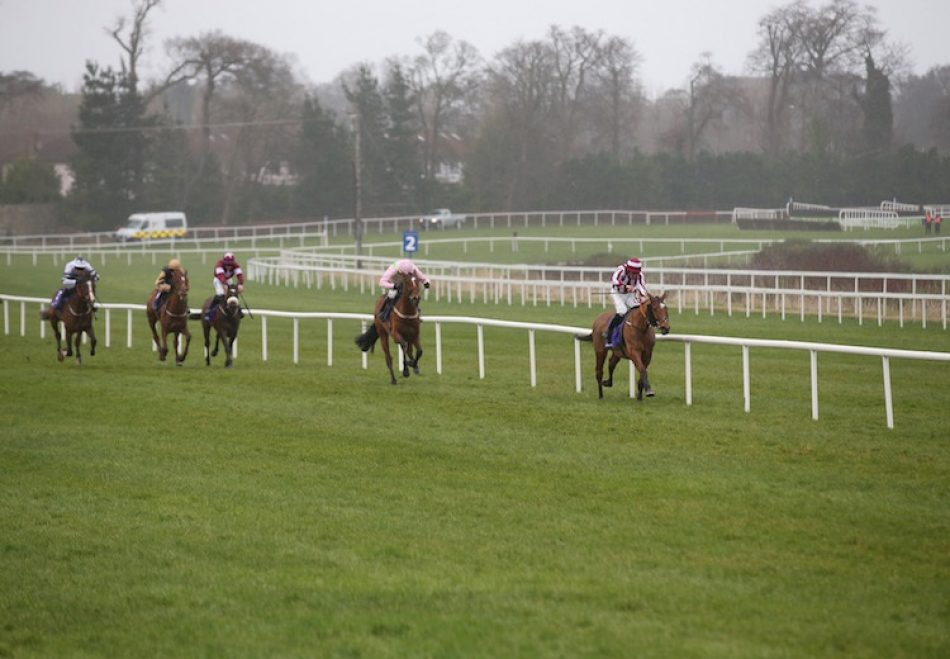 Sir Dragonet Becomes The Latest Winner By Camelot