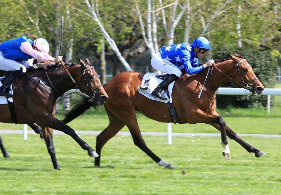 Who's Steph (Zoffany) winning the G3 Derrinstown Oaks Trial at Leopardstown