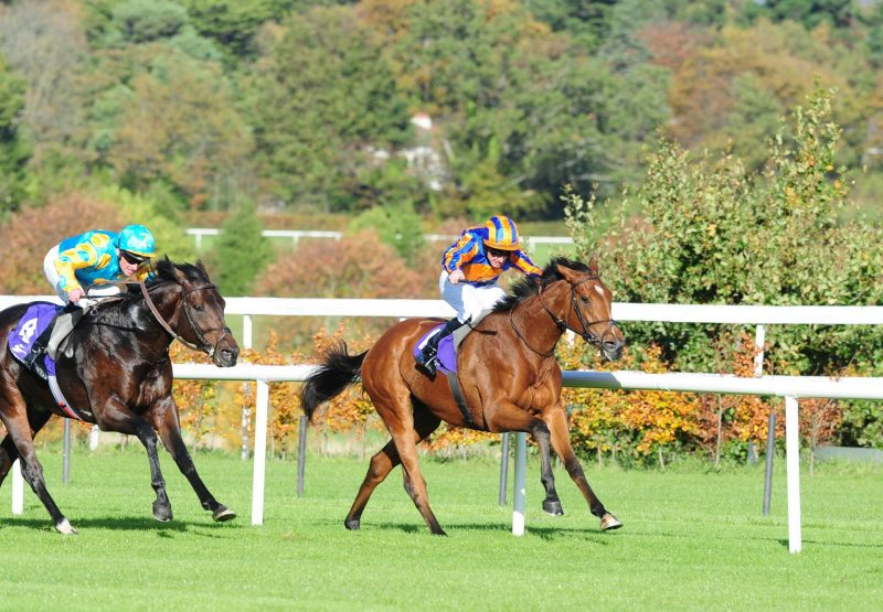 Coral Beach (Zoffany) winning the G3 Killavullan Stakes at Leopardstown
