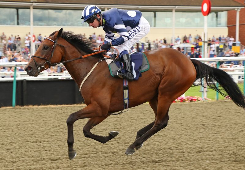 Isaan Queen (War Command) winning a novice stakes at Lingfield