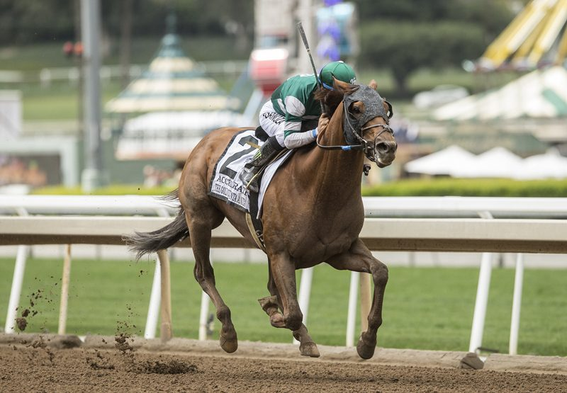 Accelerate (Lookin At Luck) winning the G1 Gold Cup At Santa Anita Stakes