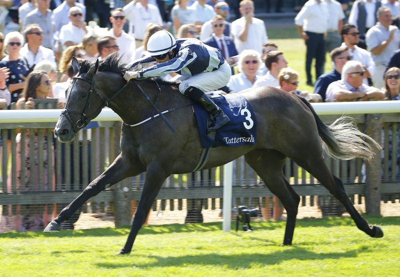 Alpha Centauri (Mastercraftsman) winning the G1 Falmouth Stakes at Newmarket