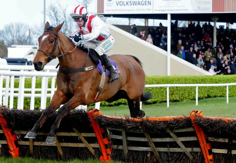 An Fraoch Mor (Mahler) Wins At Wexford To Complete A Double For Mahler