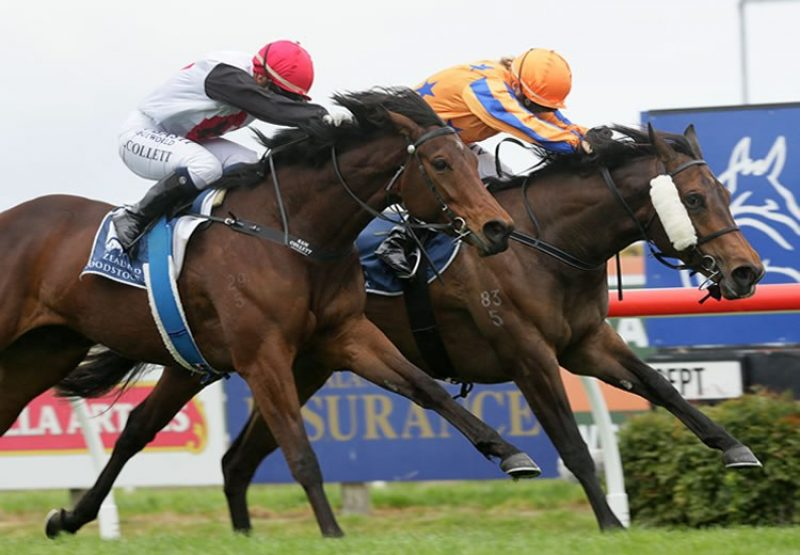 Avantage (Fastnet Rock) winning the G3 Hawke's Bay Breeders Gold Trail Stakes at Hastings