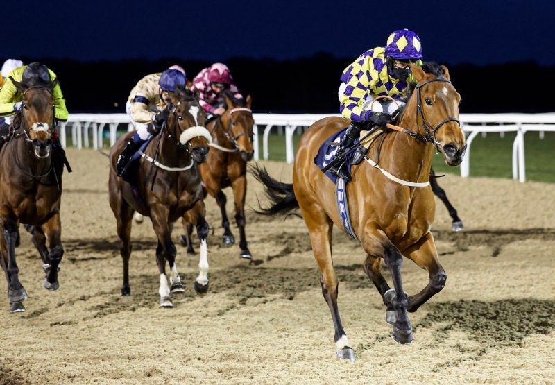 Ballintoy Harbour (Vadamos) Gains Her Second Win winning a Novice Stakes