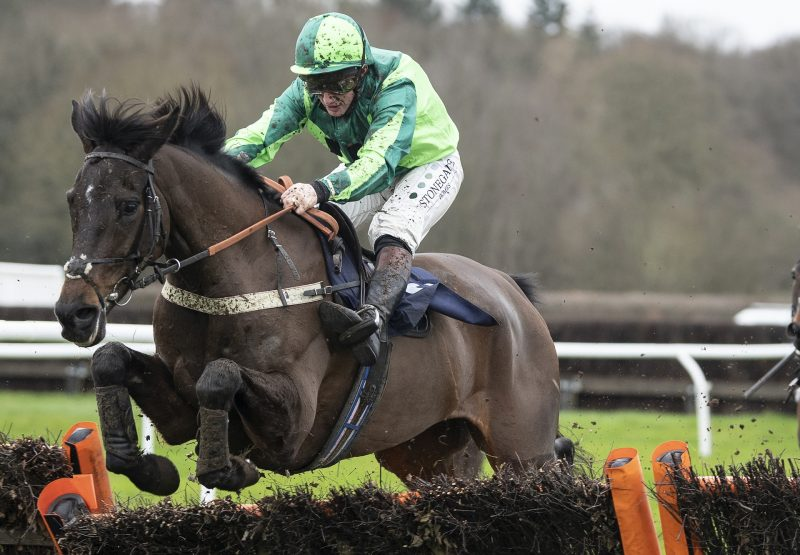 Black Gerry (Westerner) Wins The Novices Hurdle At Lingfield