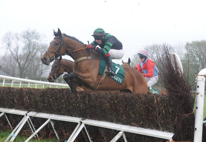 Bobhopeornohope (Westerner) winning at Dromahane