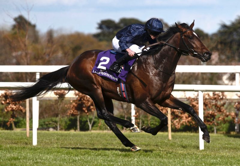 Bolshoi Ballet (Galileo) Wins The Group 3 Ballysax Stakes at Leopardstown