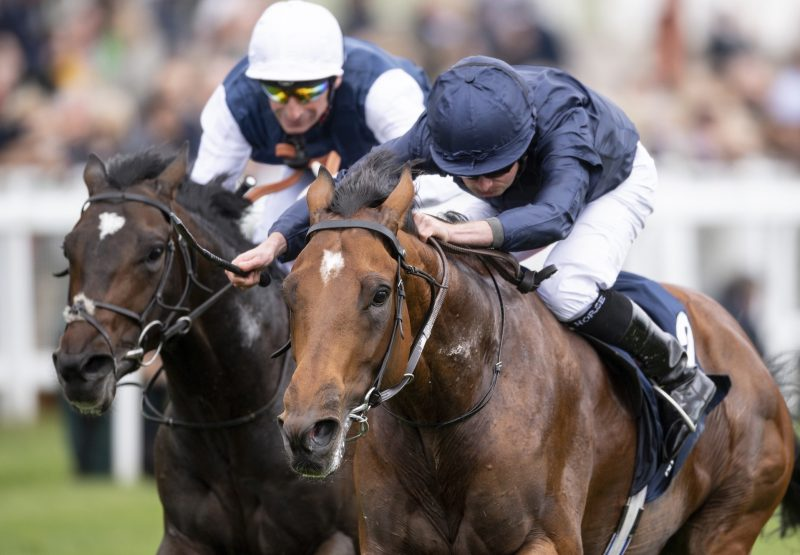 Cape Of Good Hope (Galileo) Wins Epsom Derby Trial