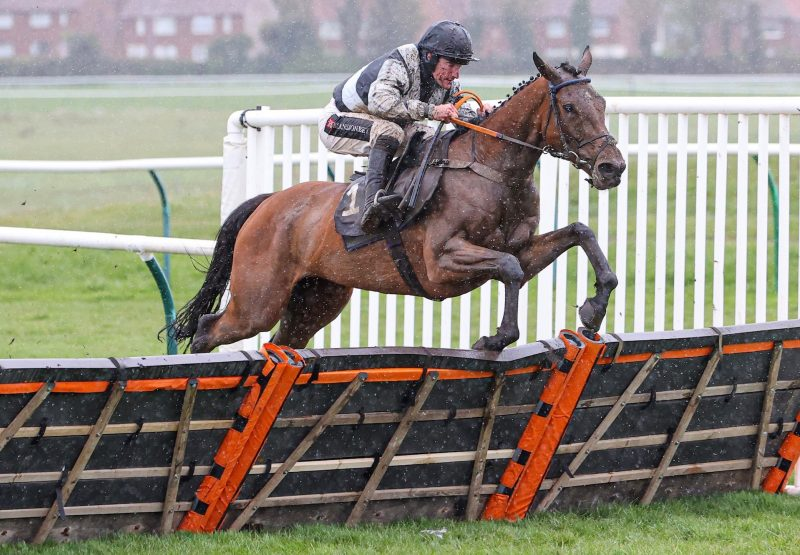 Could Be Trouble (Yeats) Wins The Mares Novices Hurdle At Ayr