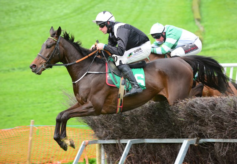 Cremant (Getaway) Wins At Taylorstown