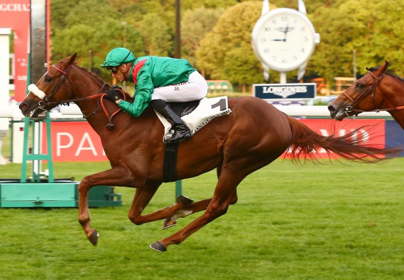 Diyani Becomes The Latest Winner By Rock Of Gubraltar