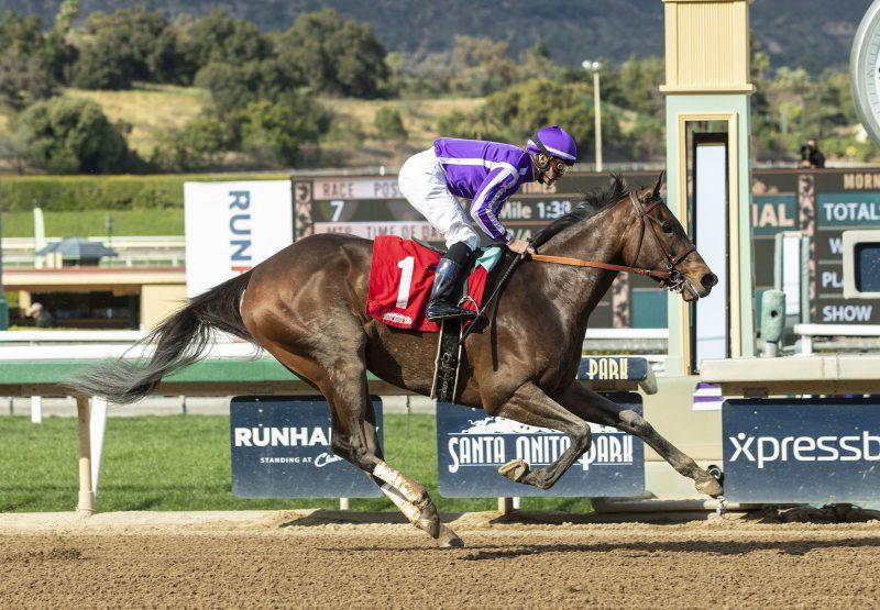 Donna Veloce (Uncle Mo) wins Gr.3 Santa Ysabel