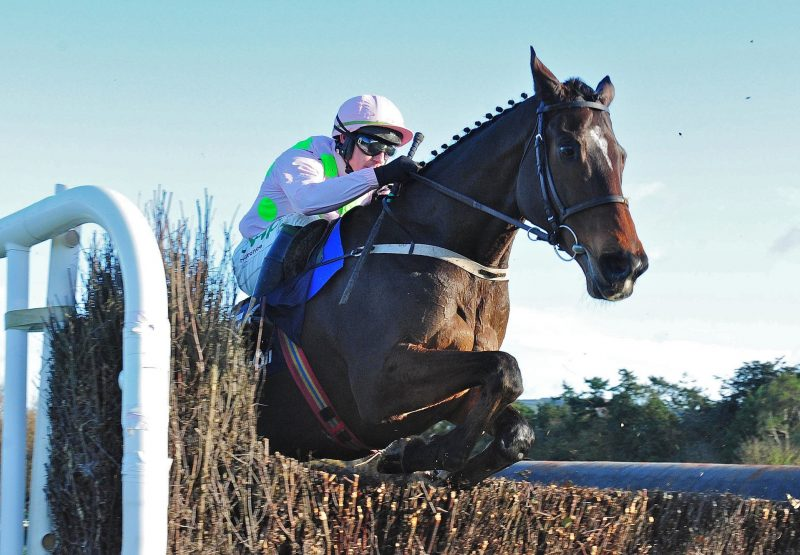 Douvan (Walk In The Park) winning the Gr.2 Clonmel Oil Chase at Clonmel
