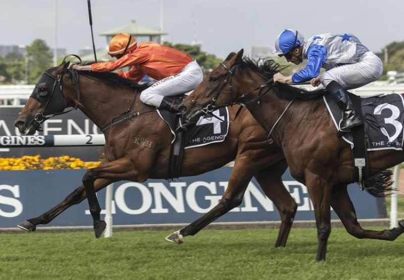 Dreamforce (Fastnet Rock) winning the Gr.1 George Ryder Stakes at Rosehill