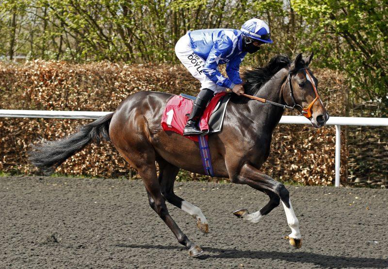 Dukebox (Holy Roman Emperor) winning at Kempton