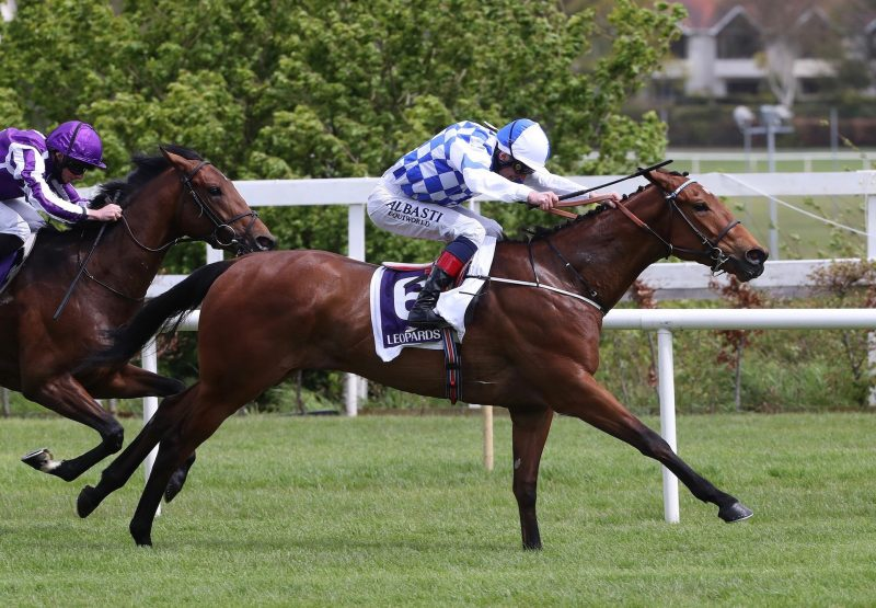 Eaglefield (Gleneagles) Wins His Maiden At Leopardstown