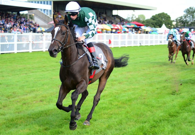 Elite Legion Becomes The Latest Winner By War Command