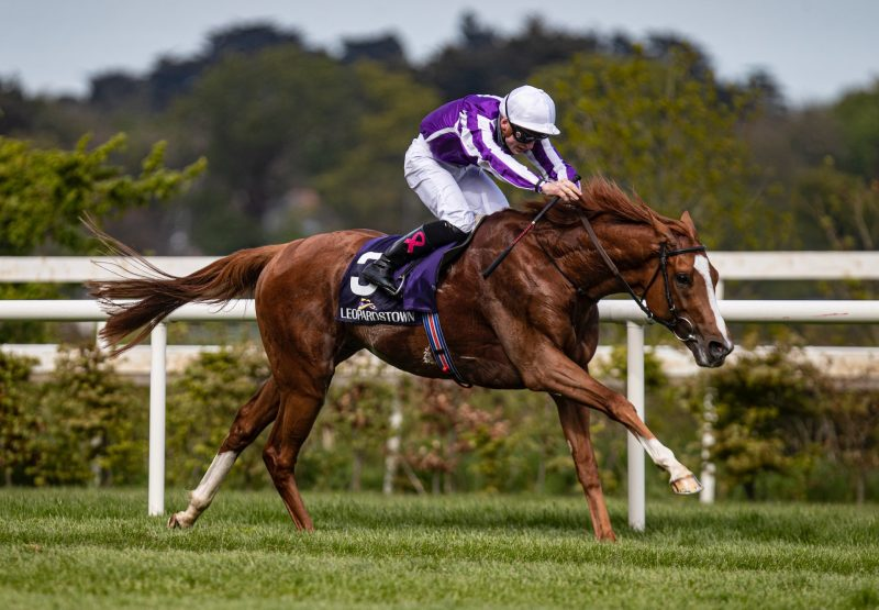 Emperor Of The Sun (Galileo) Wins The Listed Saval Beg Levmoss Stakes at Leopardstown
