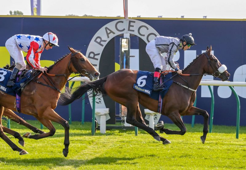Encapsulation Becomes The Latest Stakes Winner By Zoffany