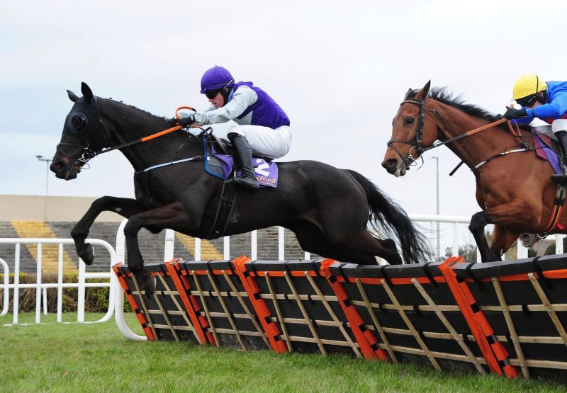 Fortune Street Wins His Maiden Hurdle At Wexford 1