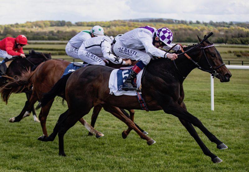 Freedom Of Speech (Australia) Wins The Irish Stallion Farms Ebf Race At Naas
