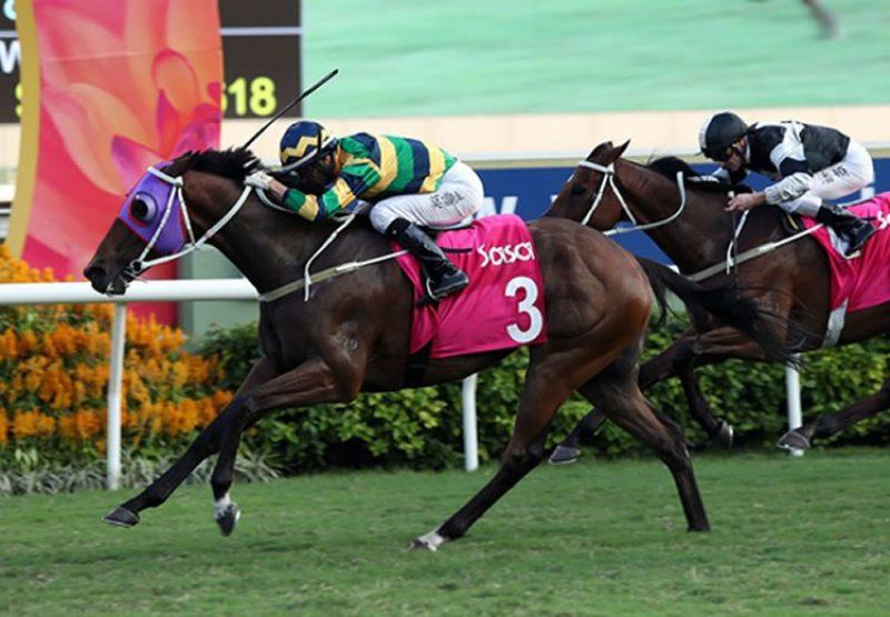 Furore (Pierro) wins the Gr.3 Sa Sa Ladies' Purse at Sha Tin