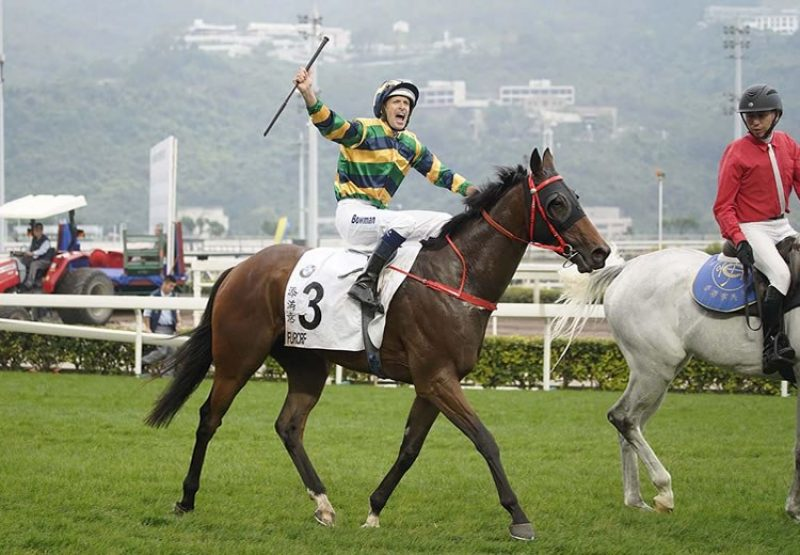 Furore (Pierro) after winning the Hong Kong Derby at Shan Tin