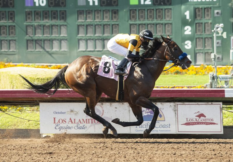Galilean (Uncle Mo) wins the Soi Phet Stakes at Los Alamitos