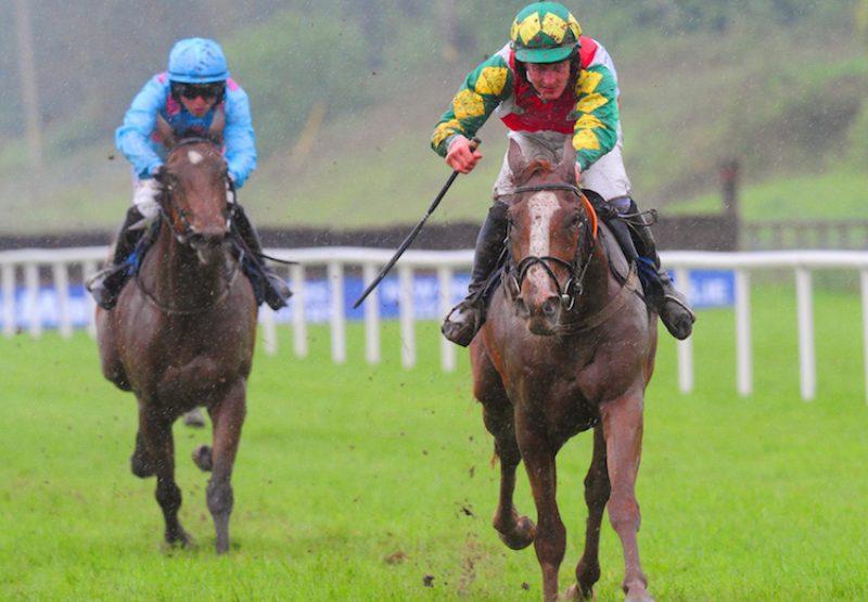 Gallowglass (Ask) winning the bumper at Limerick