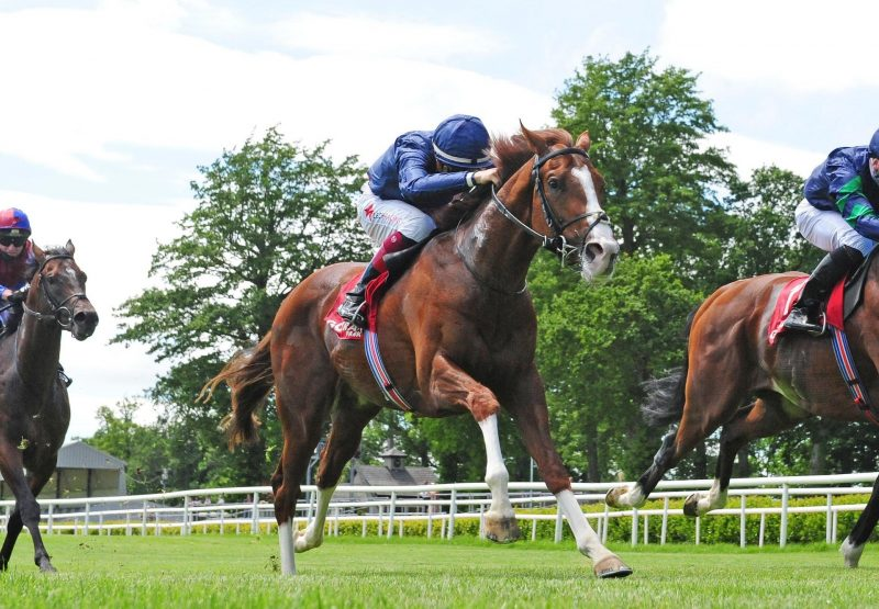 Hadman (Starspangledbanner) Wins His Maiden At Gowran Park