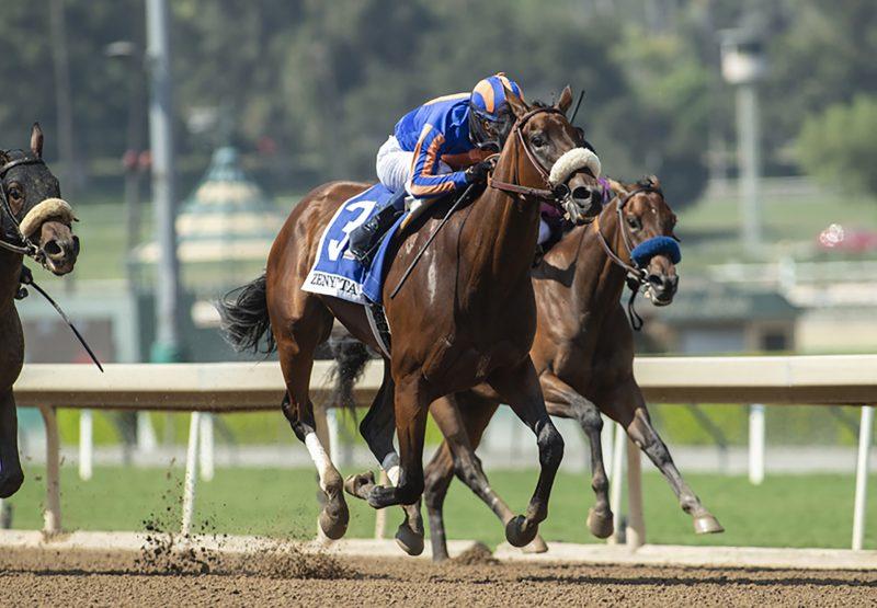 Harvest Moon (Uncle Mo) Wins Gr.2 Zenyatta Stakes at Santa Anita