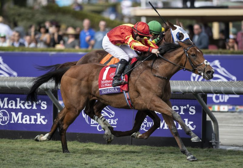 Iridessa (Ruler Of The World) Wins The Breeders Cup Fillies And Mares Turf at Santa Anita