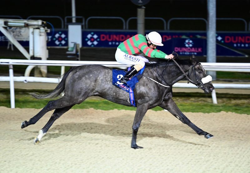 Jungle Cove Wins The Mile Maiden At Dundalk 1
